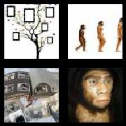 4 Pics 1 Word 8 Letters Answers Ancestor