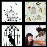 4 Pics 1 Word 8 Letters Answers Birdcage