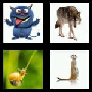 4 Pics 1 Word 8 Letters Answers Creature