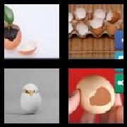 4 Pics 1 Word 8 Letters Answers Eggshell