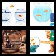 4 Pics 1 Word 8 Letters Answers Fishbowl