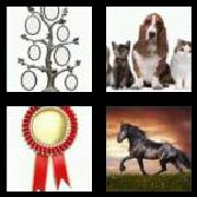 4 Pics 1 Word 8 Letters Answers Pedigree