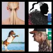 4 Pics 1 Word 8 Letters Answers Ponytail