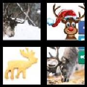 4 Pics 1 Word 8 Letters Answers Reindeer