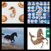 4 Pics 1 Word 8 Letters Answers Seahorse