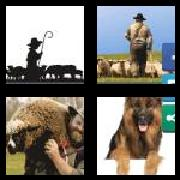 4 Pics 1 Word 8 Letters Answers Shepherd
