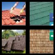 4 Pics 1 Word 8 Letters Answers Shingles