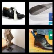 4 Pics 1 Word 8 Letters Answers Shoehorn