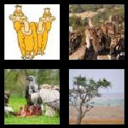 4 Pics 1 Word 8 Letters Answers Vultures