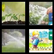 4 Pics 1 Word 8 Letters Answers Watering