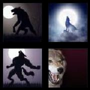 4 Pics 1 Word 8 Letters Answers Werewolf